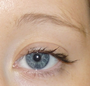 Before Semi Permanent Makeup Hairstroke brow- with lift to arch